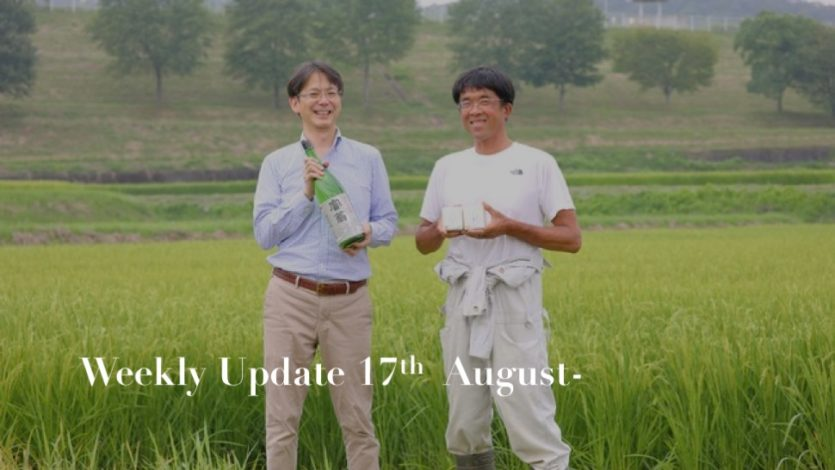 ikki Weekly Update 17th-23rd August 2020