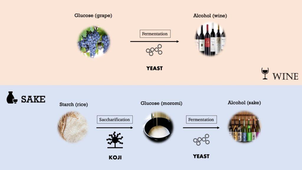 Sake Wine Brewing process